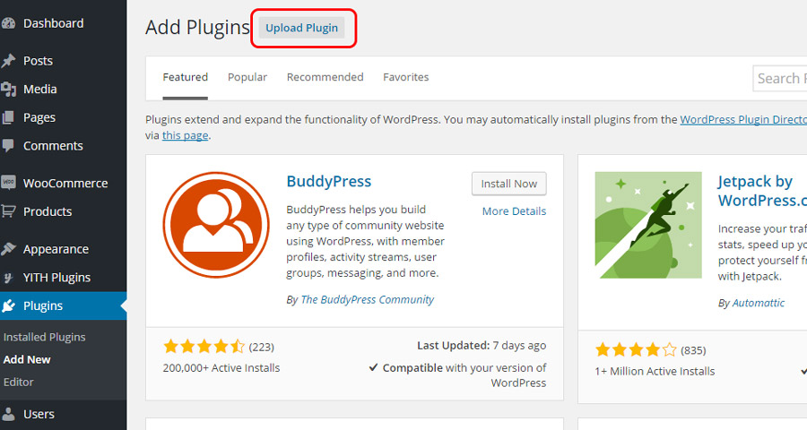 How to install the premium version of a plugin and activate the